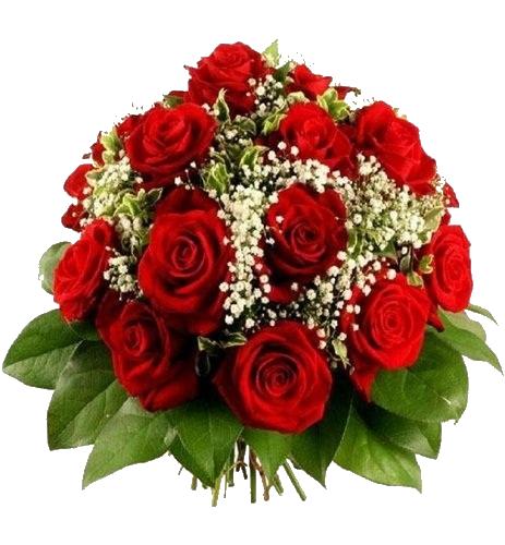 vrtnice8